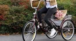 Buying Adult Tricycle – Important Things to Check Out